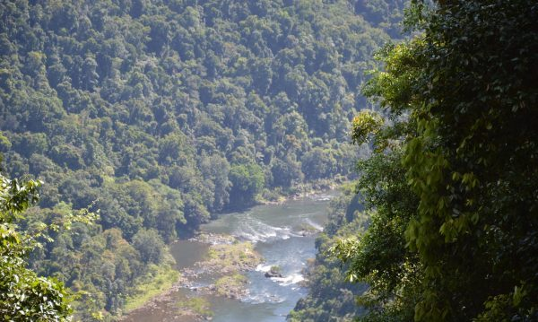 Johnstone River Lookout