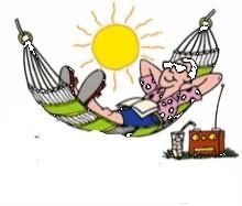 Relaxing in sun on hammock